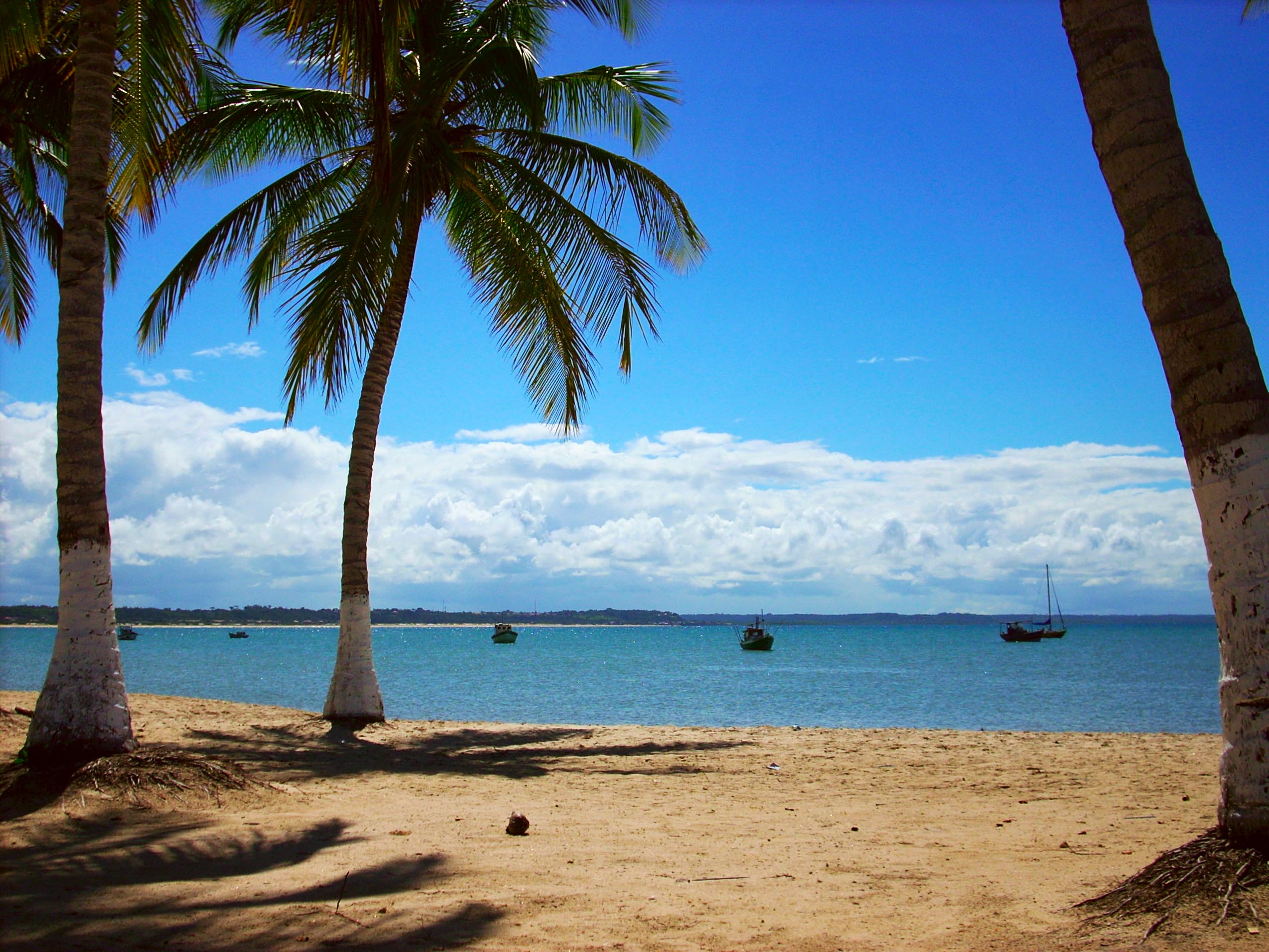 If you want views like this, the best time to visit Porto Seguro lies around the months of January and February.