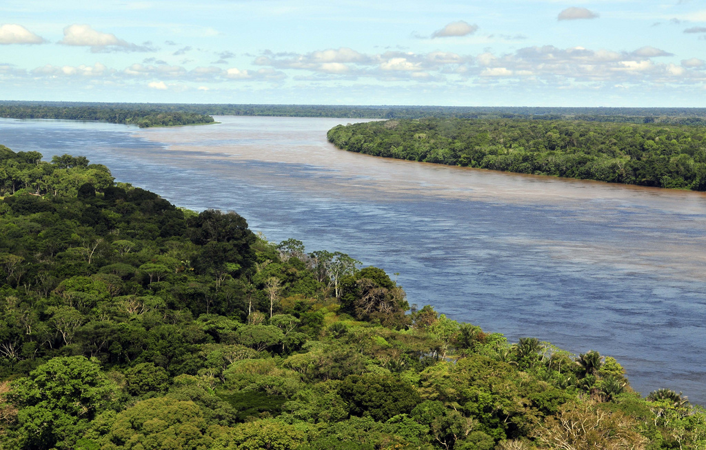 Occupying 98% of the state's land area, the rainforest is one of the top tourist attractions in Amazonas